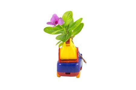 carritos de juguete: Coches de juguete camiones flores púrpuras Foto de archivo