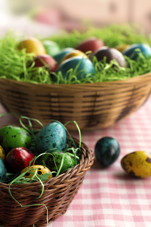 chiken: Colorful Eastern chiken and quail eggs in a wicker baskets and green grass