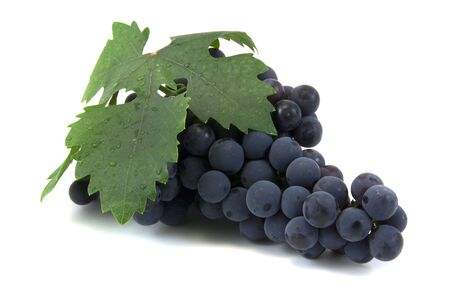 leaf grape: Uva negra uva y hoja en blanco  Foto de archivo