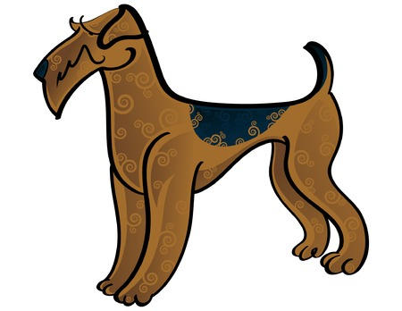 terriers: Colorful vector illustration of the dog Airedale Terrier Illustration