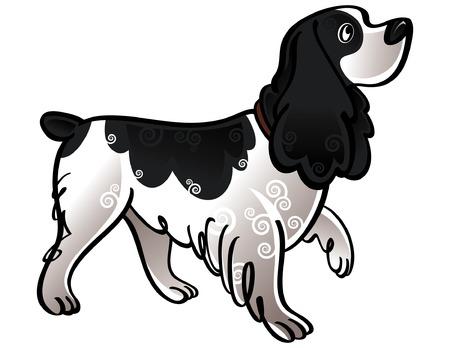 cocker: Bunte Vektor-Abbildung von der Hund Cocker Spaniel Illustration
