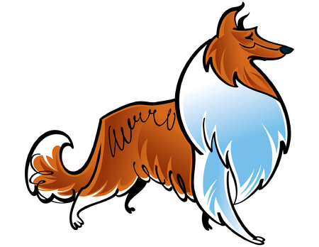 Colorful vector illustration of the dog Collie Vector