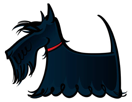 Colorful vector illustration of the dog Scottie