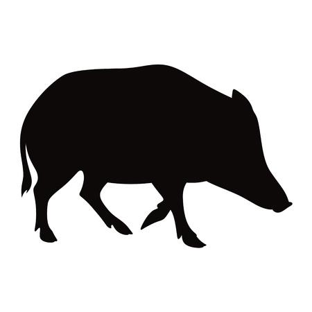 Boar animal pig beast nature vector illustration