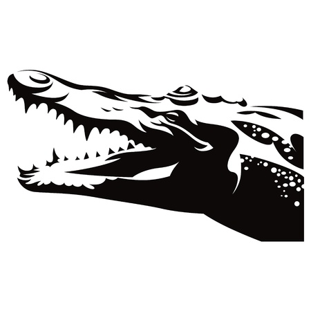 Crocodile Alligator reptile wild animal nature Vector