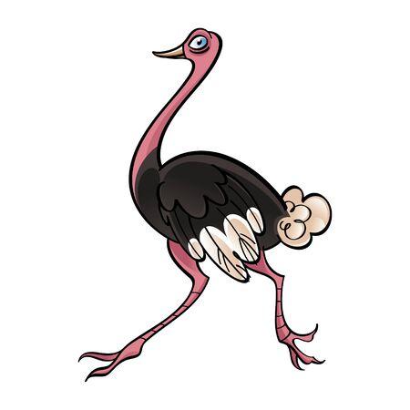 emu: Ejecuci�n de p�jaro africano pluma de avestruz corriendo