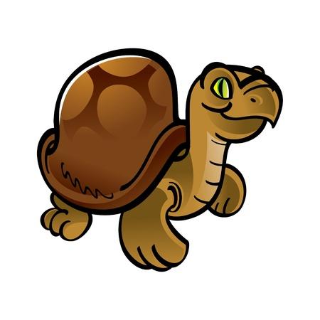 herbivorous animals: Turtle animal pet reptile zoo Illustration