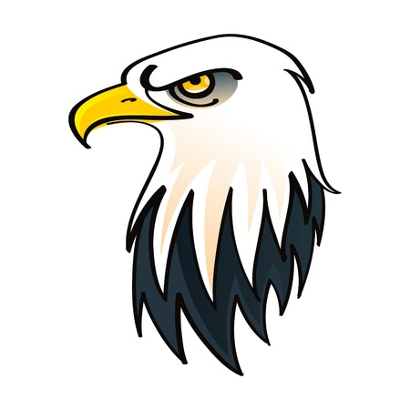 indian brave: Head of the Bald Eagle - symbol of the United States of America bird