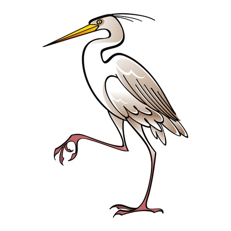White Heron bird fauna Illustration