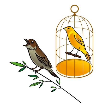 орнитология: Соловей и Канарские фауны птиц золотой клетке поют песню поздний завтрак листья Иллюстрация
