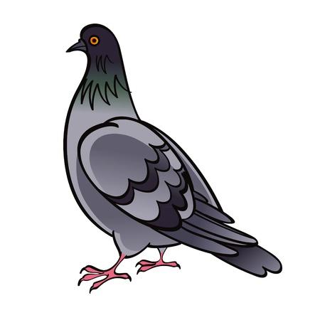 dove in flight: Pigeon Dove bird fauna Illustration