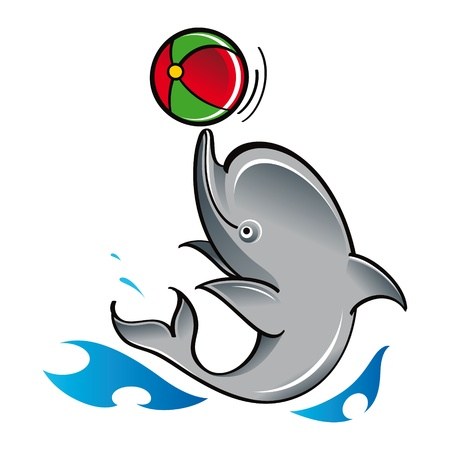 Dolphin with ball play game fish mammal sea ocean zoo Vector