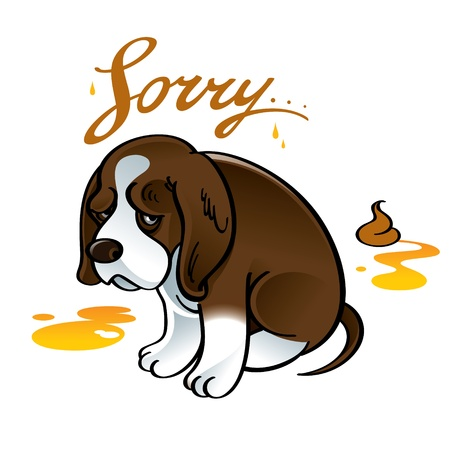 pee: Sorry sad puppy dog pet shame shit urine