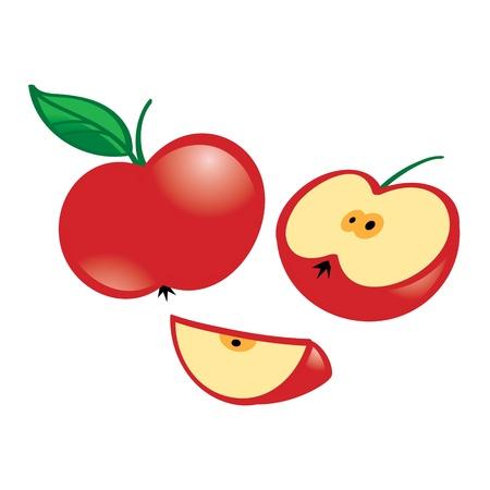 Fresh juicy fruit Apple half slice leaf Stock Vector - 20282056