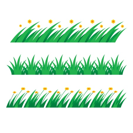 Grass green field lawn flower nature herb Vector