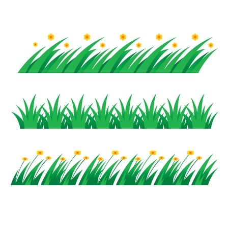 seeding: Grass green field lawn flower nature herb