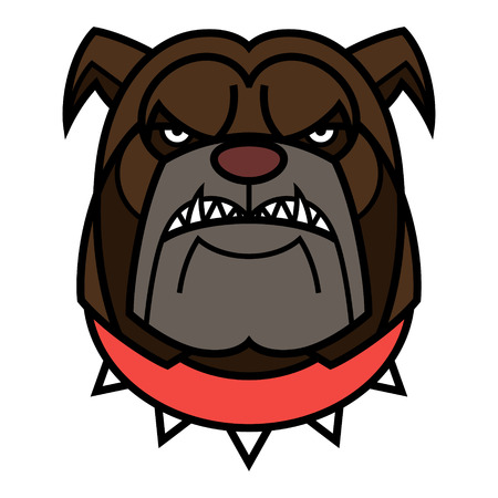 Angry Bulldog is in red spiked collar Vector