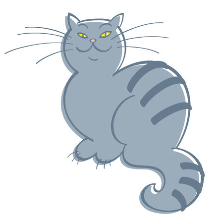 grey cat: Cat - grey domestic cat, feline, pet