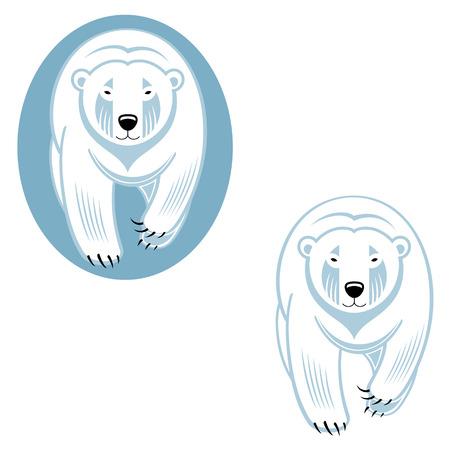south pole: Polar bear - wild animal from North Pole