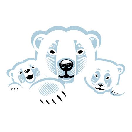 ourson: Trois blancs ours polaires animaux famille
