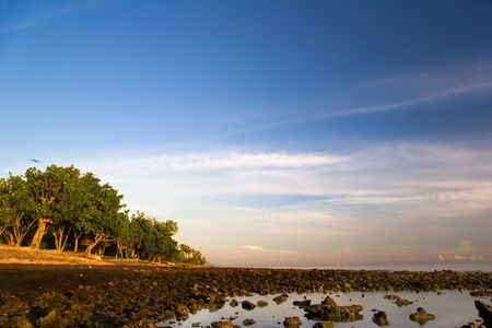 Sunrise on Pemuteran beach, Bali island, Indonesia photo