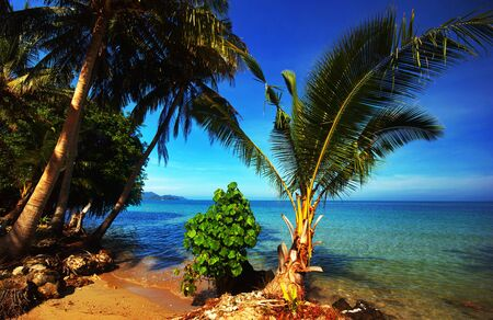 On the tropical beach. Siam bay. Province Trat. Koh Chang island. Kingdom Thailand photo