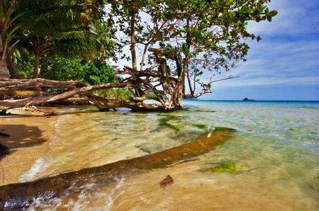On the tropical beach. Siam bay. Province Trat. Koh Chang island. Kingdom Thailand photo