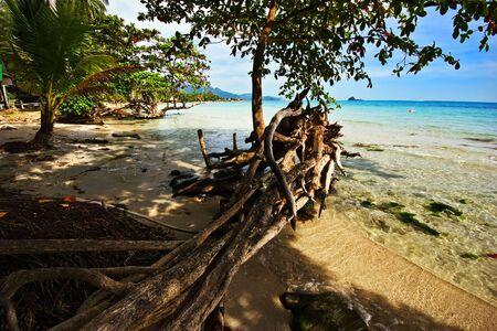 On the tropical beach. Siam bay. Province Trat. Koh Chang island. Kingdom Thailand Stock Photo - 4652836