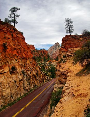 Roads of Zion canyon. Utah. USA.