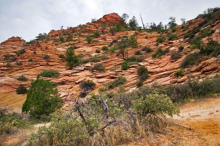 Slopes of Zion canyon. Utah state. USA photo