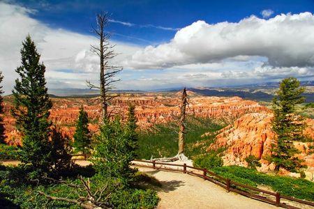 Slopes of Bryce canyon. Utah state. USA Stock Photo - 4761042
