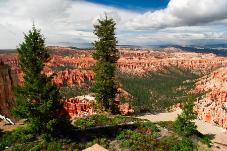 Slopes of Bryce canyon. Utah state. USA Stock Photo - 4761096