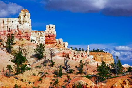 Slopes of Bryce canyon. Utah state. USA Stock Photo - 4761050