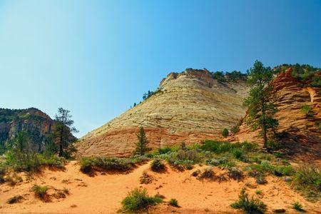 Slopes of Zion Canyon. Utah. USA photo
