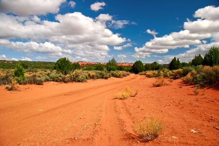 Landscape near Coral Pink Sand Dune National Park. Utah. USA Stock Photo - 5394721