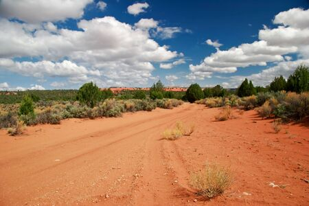 Landscape near Coral Pink Sand Dune National Park. Utah. USA Stock Photo - 5394663