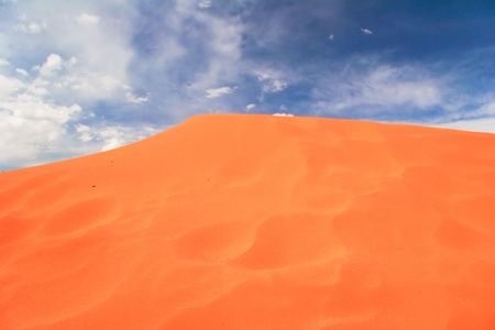 View on Coral Pink Sand Dune National Park. Utah. USA Stock Photo - 5394715