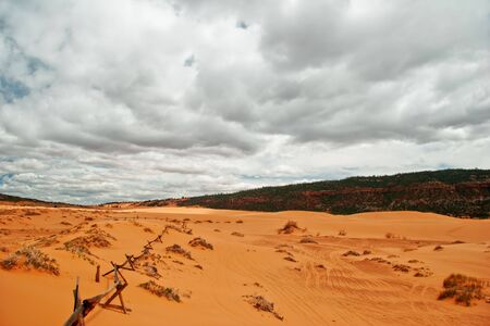 View on Coral Pink Sand Dune National Park. Utah. USA Stock Photo - 5394642