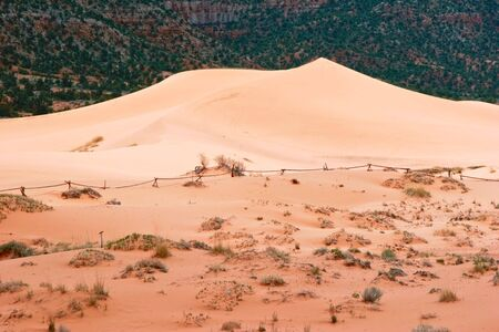 View on Coral Pink Sand Dune National Park. Utah. USA Stock Photo - 5394690