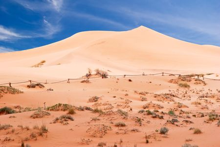 View on Coral Pink Sand Dune National Park. Utah. USA Stock Photo - 5394671