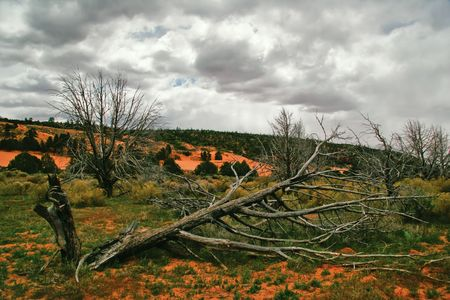 Landscape of Utah photo