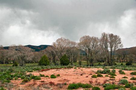 Landscape of Utah Stock Photo - 5394637