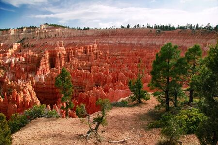 american field service: Slopes of Bryce canyon. Utah. USA. Stock Photo