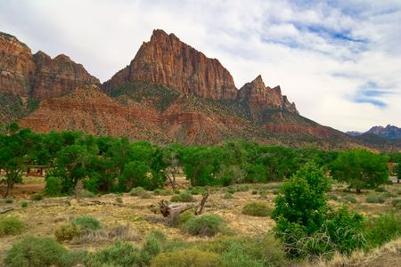 Slopes of Zion canyon. Utah. USA. Stock Photo - 5408566