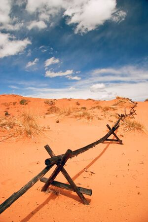 american field service: In the Coral Pink Sand Dune National park. Utah. USA