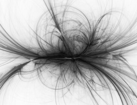 blackwhite: Beatiful black&white fractal Stock Photo