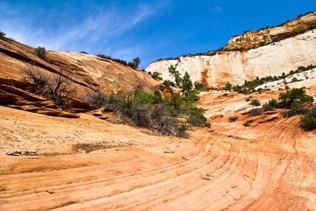Relieves de ca��n Zion. Utah. ESTADOS UNIDOS DE NORTEAMERICA.  Foto de archivo - 6061234