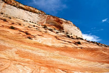 Reliefs of Zion canyon. Utah. USA. photo