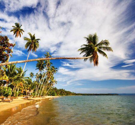 On the tropical beach. Siam bay. Province Trat. Koh Mak island. Kingdom Thailand Stock Photo - 6851270