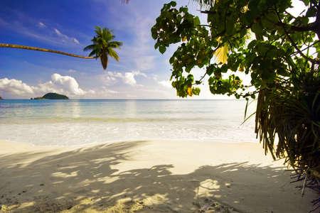 On the tropical beach. Siam bay. Province Trat. Koh Mak island. Kingdom Thailand photo